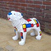 Exclusieve Engelse Bulldog Mondriaan