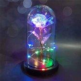 Gouden Roos in Glas - Glazen Stolp met LED – Liefdes Cadeau voor Vrouw Moederdag Valentijnsdag - Luxe Cadeau - Galaxy