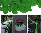 Decoratie - Aquarium - DIY - lichtgevend groen - 200 stuks - Quickretail