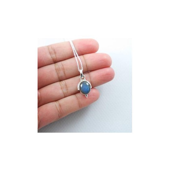House of Jewels - Labradoriet hanger met 925 Zilver ketting- 45cm