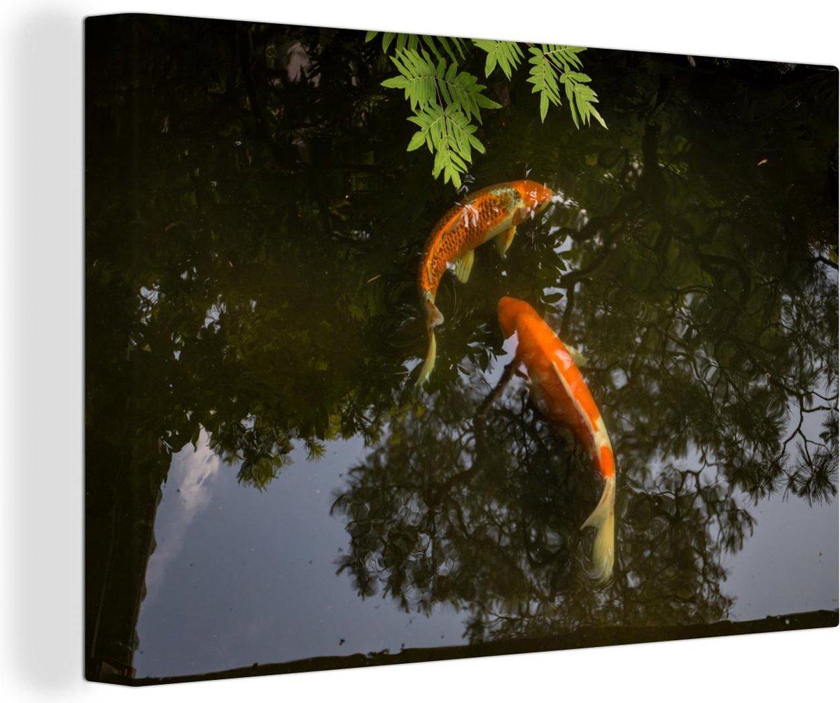 Twee koi karpers om een vijver canvas 30x20 cm - klein - Foto print op Canvas schilderij (Wanddecoratie woonkamer / slaapkamer) / Wilde dieren Canvas Schilderijen