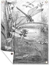 Een zwart-wit illustratie van enkele libellen tuinposter 60x80 cm - Tuindoek / Buitencanvas / Schilderijen voor buiten (tuin decoratie)