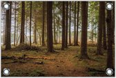 Tuinposter –Bos – 40x30 Foto op Tuinposter (wanddecoratie voor buiten en binnen)