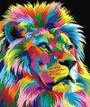 Gekleurde Leeuw