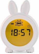 Slaaptrainer Bunny