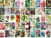 50 Luxe Wenskaarten - Blanco Bloemen - 17x12cm - Gevouwen kaarten zonder tekst - Bloemen Assorti
