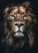 Leeuw op Plexiglas   Staand 60 x 90 cm   Dieren schilderijen   Wanddecoratie voor binnen en buiten   Lion op Acrylglas