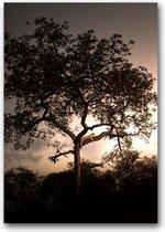 Dibond 80 x 110 cm Landscape Photography.