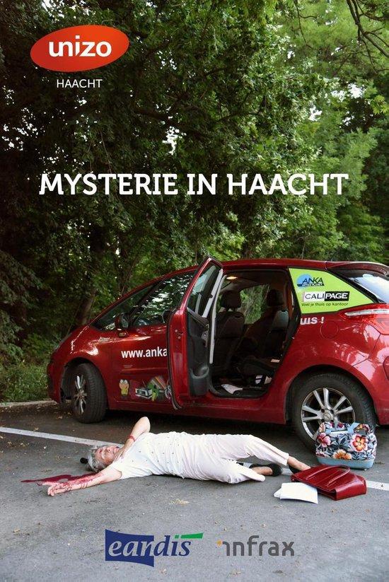 Mysterie in Haacht - Tom Bergs |
