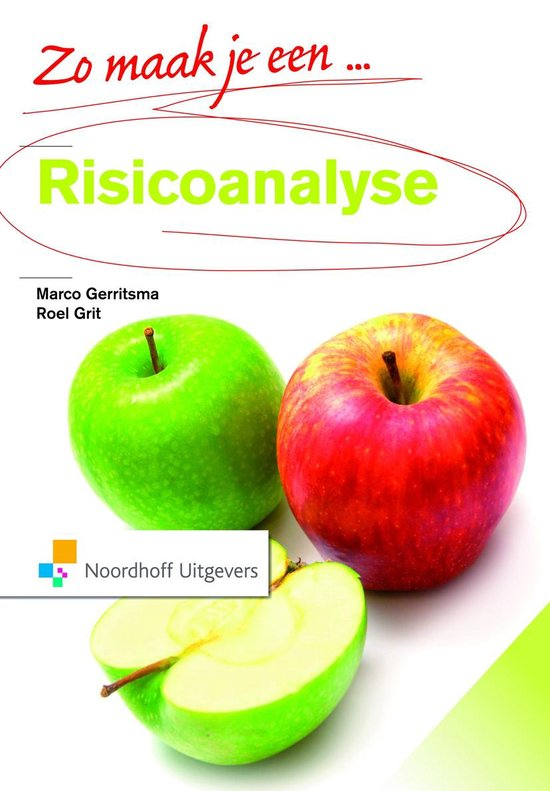 Zo maak je een risicoanalyse - Marco Gerritsma pdf epub
