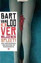 Boek cover O vermiljoenen spleet van Bart van Loo