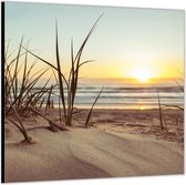 Dibond –Zand op het Strand -50x50 Foto op Aluminium (Wanddecoratie van metaal)
