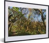 Poster met lijst Nationaal park Calilegua - De jungle in het nationaal park Calilegua met helderblauwe lucht in Argentinië fotolijst zwart met witte passe-partout - fotolijst zwart - 40x30 cm - Poster met lijst