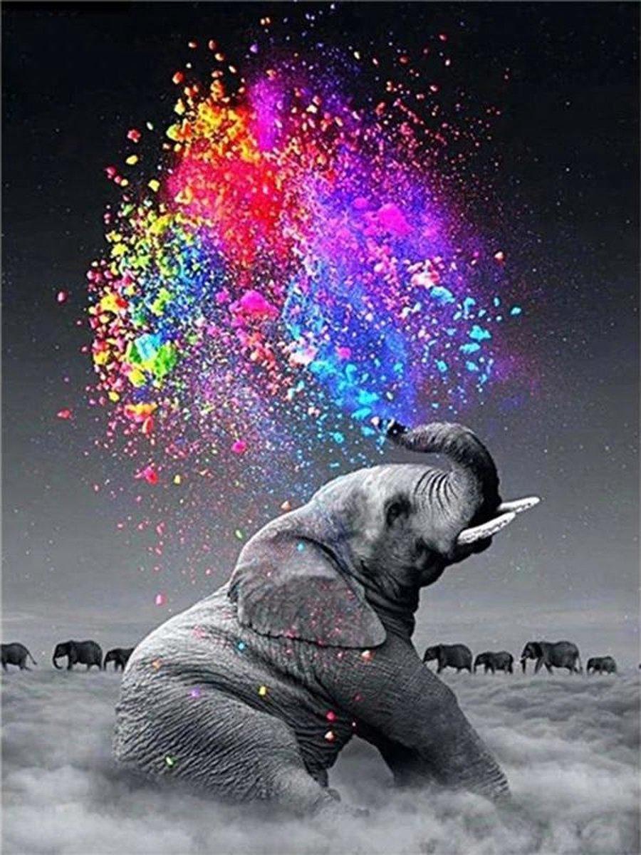 Diamond Painting olifant - Diamond painting - Diamond painting dieren - 20 x 30 - Diamond painting volwassenen - Diamond painting pakket volledig - Kleurrijk