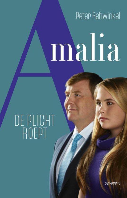 Boek cover Amalia van Peter Rehwinkel (Paperback)
