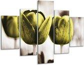 Glasschilderij Tulpen | Bruin, Groen | 100x70cm 5Luik | Foto print op Glas |  F002795