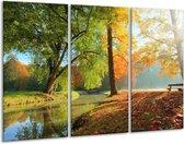 Canvas schilderij Herfst | Oranje, Bruin, Groen | 120x80cm 3Luik