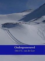 Ondergesneeuwd