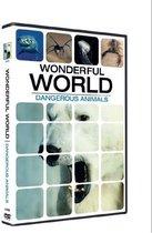 Wonderful World - Dangerous Animals