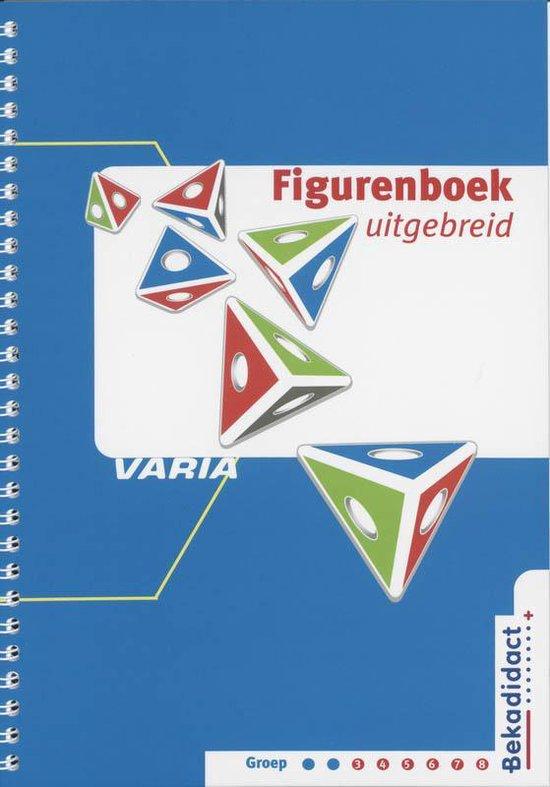 Varia Figurenboek Uitgebreid Groep 3 t/m 8 - Astrid Schipper |