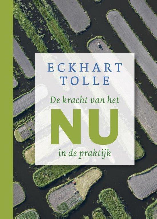Boek cover De kracht van het nu in de praktijk van Eckhart Tolle (Hardcover)