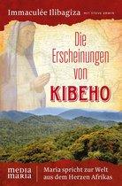 Omslag Die Erscheinungen von Kibeho