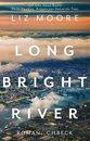 Omslag Long Bright River