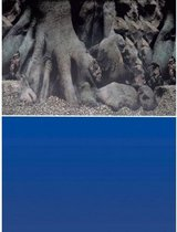 Superfish Poster - Aquarium Deco achterwand 4 - Afmeting: 150 x 61 cm