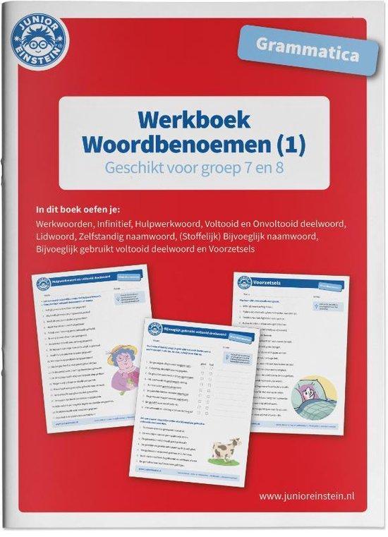 Grammatica Woordbenoemen 1 Geschikt voor groep 7 en 8 Werkboek - none |