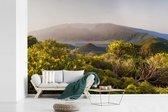 Fotobehang vinyl - Wilde bloemen in het Nationaal park Caldera de Taburiente in Spanje breedte 540 cm x hoogte 360 cm - Foto print op behang (in 7 formaten beschikbaar)