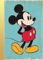 Gouden Boekjes - Het Gouden Boek van Mickey Mouse