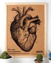 Milimetrado Prikbord Anatomie 40 X 30 Cm Kurk/hout Bruin