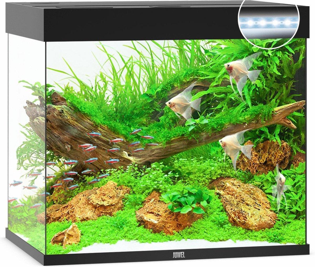 Juwel Lido 200 LED Aquarium - Zwart - 200L - 71 x 51 x 65 cm - Juwel