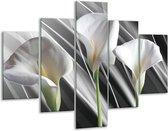 Glasschilderij Bloem | Grijs, Wit, Groen | 100x70cm 5Luik | Foto print op Glas |  F004706