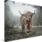 Schotse hooglander in de herfst Canvas 80x60 cm - Foto print op Canvas schilderij (Wanddecoratie woonkamer / slaapkamer) / Wilde dieren Canvas Schilderijen