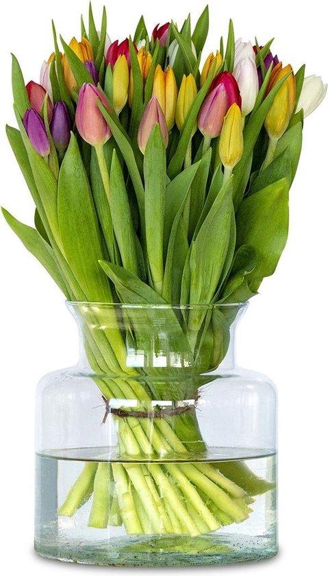 Mix tulpen - 12 stuks