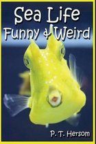 Sea Life Funny & Weird Marine Animals