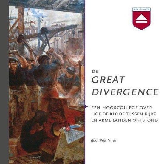Boek cover De Great Divergence van Peer Vries (Onbekend)