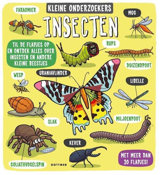 Kleine onderzoekers - Insecten - none |