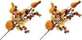 2x Oranje herfsttakje instekers voor kerststukjes 17 cm - Kerststukje maken onderdelen - Kerstversiering