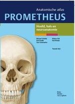 Prometheus anatomische atlas  -   Hoofd, hals en neuroanatomie