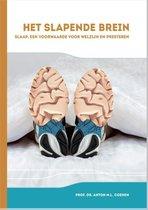 Het slapende brein