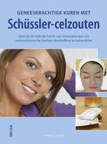 Boek cover Geneeskrachtige Kuren Met Schussler Celzouten - Boek van Gunther H. Heepen