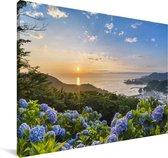 Zonsondergang boven van hortensia bloemen Canvas 90x60 cm - Foto print op Canvas schilderij (Wanddecoratie woonkamer / slaapkamer)