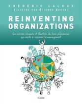 Reinventing Organizations illustré