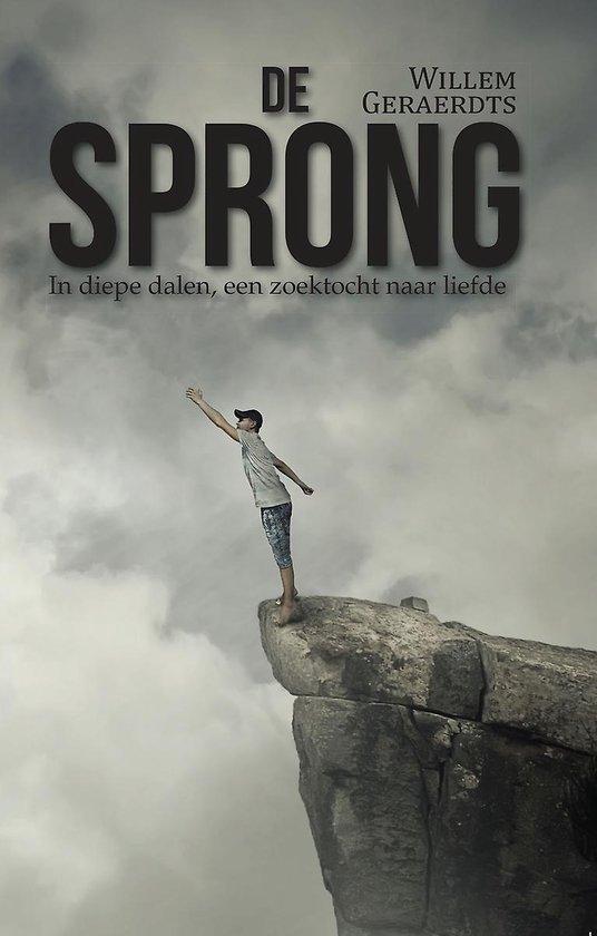 De sprong - in diepe dalen, een zoektocht naar liefde - Willem Geraerdts  
