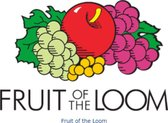 Fruit of the Loom Shirts heren maat M