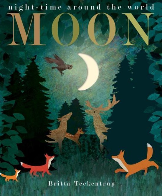 Boek cover Moon van Patricia Hegarty (Hardcover)