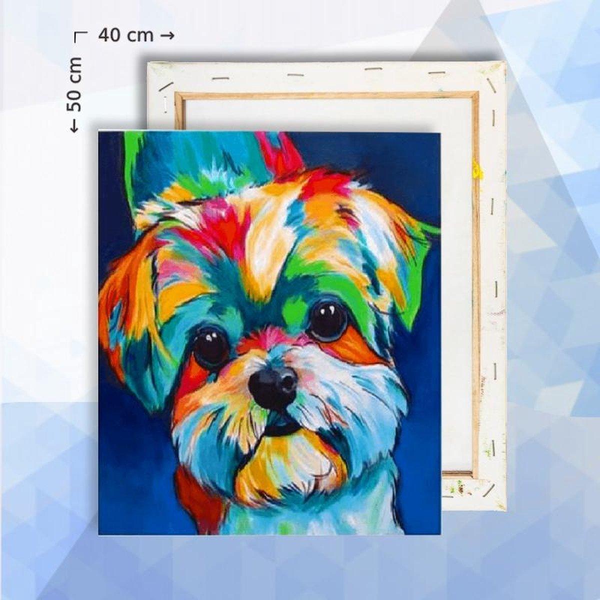 Schilderen op nummer pakket Regenboog hondje - 40 x 50 cm - met frame