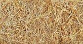 Boer'n Goed Stro 7 kg. Bodembedekking - knaagdieren - stro - konijnen